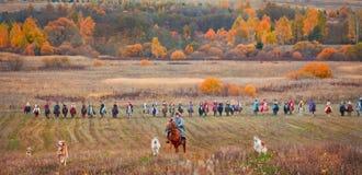 马狩猎 免版税库存图片