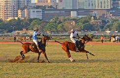 马球在孟买 免版税库存图片