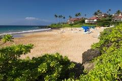 马球海滩,毛伊,夏威夷南岸  免版税库存图片