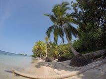 马球海滩 库存图片