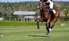 马球马球员骑马 免版税图库摄影