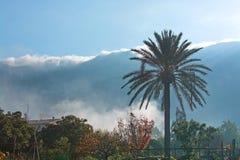 马略卡冬天风景 免版税库存照片