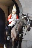 马的伦敦英国军事监护人 库存照片