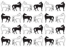 马的剪影 免版税库存图片