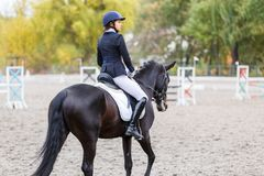 马的年轻车手妇女在驯马竞争 免版税图库摄影