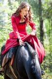 马的深色的女孩 库存图片