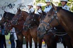 马的澳大利亚女警官员在皇家复活节在悉尼奥林匹克公园显示 免版税库存图片