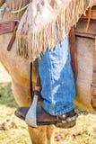 马的牛仔 库存照片