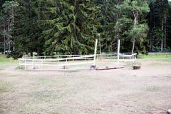 马的篱芭本质上 库存图片