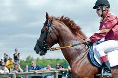 马的骑师在起始时间之前 库存图片