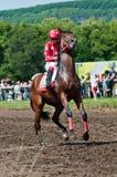 马的骑师在起始时间之前 免版税库存图片