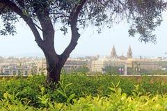 马耳他,上部Barraka庭院 免版税库存图片