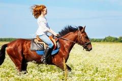 马背疾驰在用花装饰的草甸的少妇 免版税库存照片