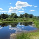 马萨葡萄园岛的池塘 免版税库存照片