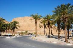 马萨达,以色列- 2019年3月22日:对马萨达绿洲的路入口是古老设防在以色列的南区 库存照片