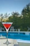 马蒂尼鸡尾酒游泳池边 免版税库存照片