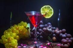 马蒂尼鸡尾酒玻璃用在黑暗的背景的柠檬 免版税图库摄影