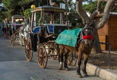 马行与支架的在姆迪纳,马耳他 库存图片