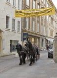 马被驾驶的支架在萨尔茨堡,奥地利 库存图片