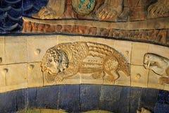 马赛克的片段与一种演变剧情的从莫斯科古生物学博物馆  12月2018 01日 免版税库存图片