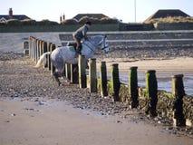 马跳跃的groyne 免版税图库摄影