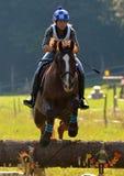 马跳跃 免版税图库摄影
