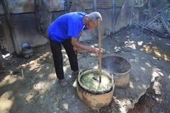 从马达加斯加的香草选择 免版税库存照片