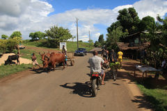 马达加斯加街 库存图片