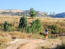马达加斯加,伊萨卢国家公园,与妇女的风景有洗衣篮的 库存照片