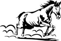 马运行中 免版税图库摄影