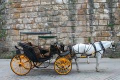 马运输车 免版税库存照片
