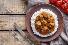 马都拉斯黄油牛肉辣亚洲garam masala慢厨师羊羔食物用米和蕃茄 库存图片