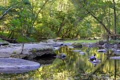 马里兰阿巴拉契亚山脉小河 库存图片