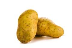 马铃薯 免版税库存照片