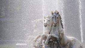 马雕象 库存图片