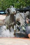 马雕象 免版税库存照片