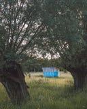 马风雨棚在草甸 库存照片