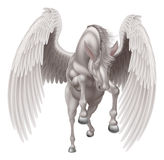 马飞过的佩格瑟斯 免版税图库摄影