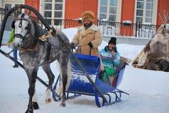 马骑术在冬天 免版税库存照片