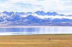 马骑术在歌曲kul湖在吉尔吉斯斯坦 免版税库存照片