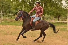 马骑术在训练学校,艾哈迈达巴德 图库摄影