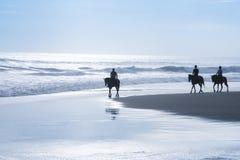 马骑术浏览kuta海滩巴厘岛印度尼西亚 库存图片