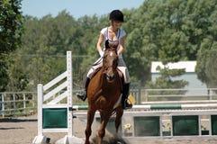 马骑术 库存照片