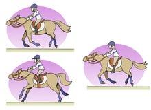 马骑术 库存图片