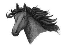 黑马头传染媒介剪影马种族标志 免版税图库摄影