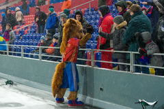 马-在足球赛的CSKA标志 库存图片