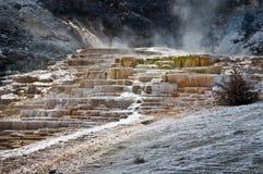 马默斯斯普林斯,黄石国家公园 库存图片