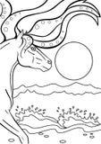 马 Kelpy 在海滩的水马 线描 对上色 向量例证