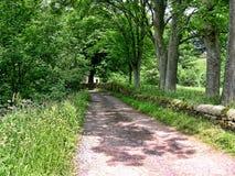 驮马桥梁在Wycoller村庄在兰开夏郡 免版税库存照片
