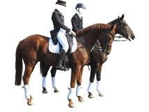 驯马车手男人和妇女有在白色隔绝的两匹马的 免版税库存图片